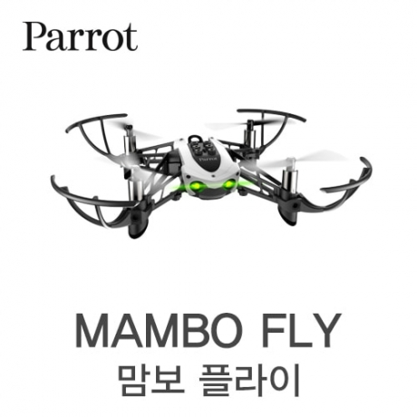 [parrot] 맘보 | MAMBO FLY